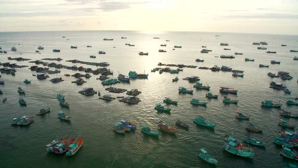 Thumbnail for Many Fishing Boats in the Sea Near the Shore