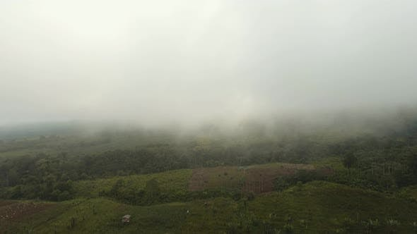 Thumbnail for Farmland in the Mountains in the Fog. Jawa Island, Indonesia