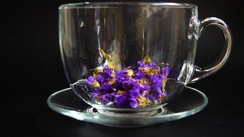 Tea from Myosotis flowers.