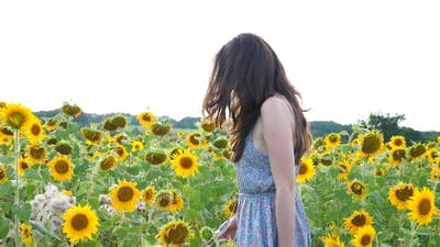 Side View of Carefree Woman Walking Among Blooming Sunflowers