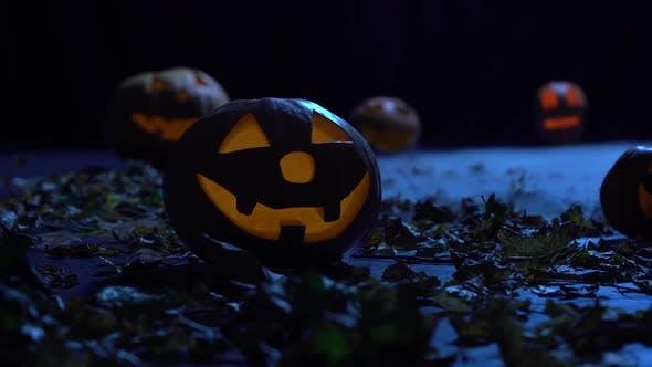 Gruselige Kürbisse für Halloween leuchten im nebligen Wald