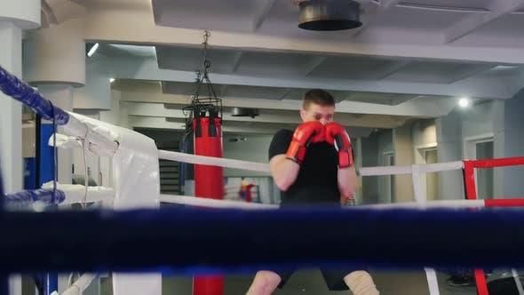 Thumbnail for Box Training - a Man Performing a Shadow Boxing