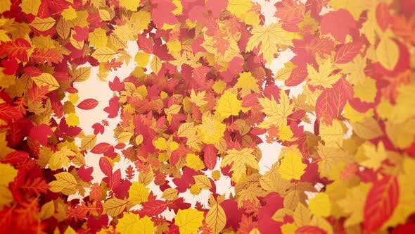 Thumbnail for Autumn Leaf Background