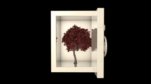 Tree in the Vault