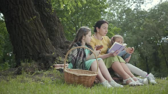 Thumbnail for Elegant Senior Woman Sitting on the Blanket Under the Tree in the Park Reading the Book