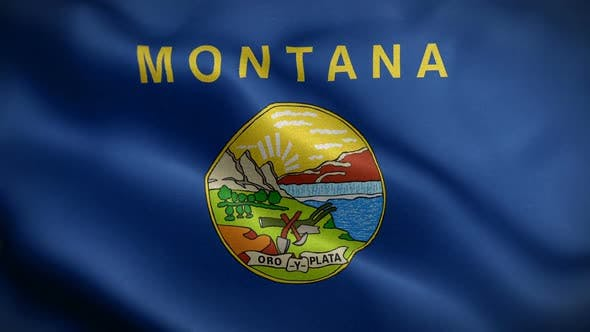 Thumbnail for Montana State Flag Blowing In Wind