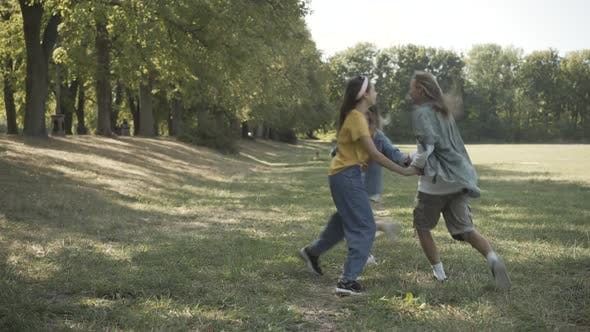 Thumbnail for Wide Shot Carefree High Hippies Jumping Circle Holding Hands