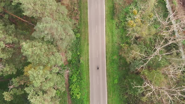 Thumbnail for Cyclist is training on road bike on empty road at countryside. Bike rider is cycling on bicycle