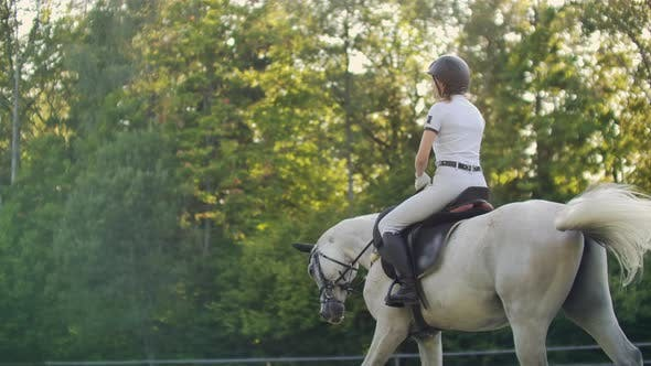 Thumbnail for Slow Motion: Horseback Riding From Horsewomen