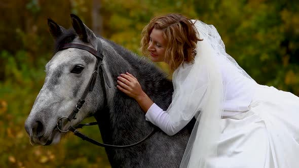 Thumbnail for Horsewoman in Poofy Wedding Dress Is Stroking Horse. Close Up