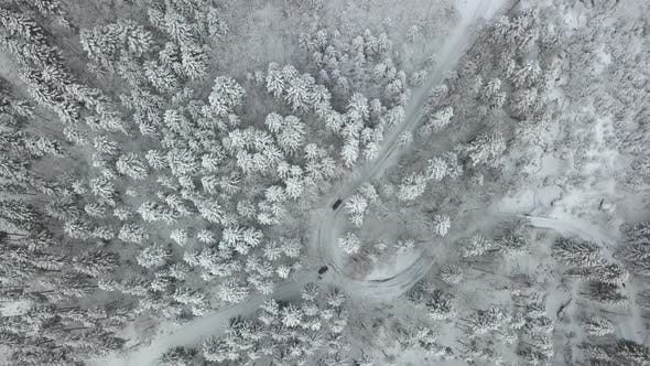 Thumbnail for Top Down View Of Car Driving Trough A Winter Forest With Light Snowfall