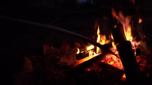 The Man Straightens the Coals in the Fire. The Fire Is Burning in the Middle of the Night Close-up.