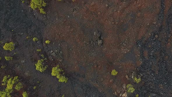 Thumbnail for Volcanic Ground Surface