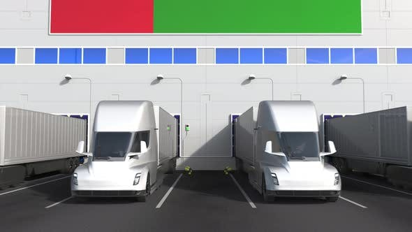 Trailer Trucks at Warehouse Loading Bay with Flag of OMAN