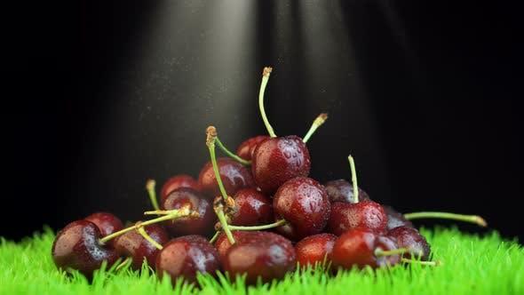 Thumbnail for Sun light shining on Pile of ripe cherries against black background