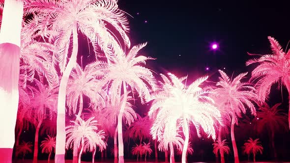 Glowing Pink Palm Trees Alley