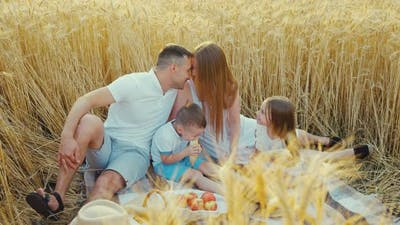 Romantic Moments at Family Picnic in Field