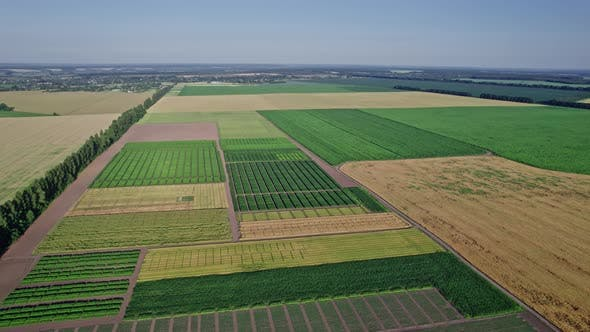 Aerial View of Countryside Landscape Farmland