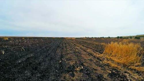 Die Kamera bewegt sich auf dem verbrannten Feld