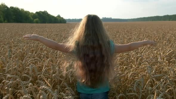 Little girl running cross the wheat field at sunset. Slow motion. The concept of a happy family.