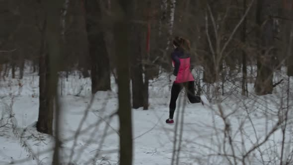 Thumbnail for Athletic Woman Jogging Through Forest in Winter
