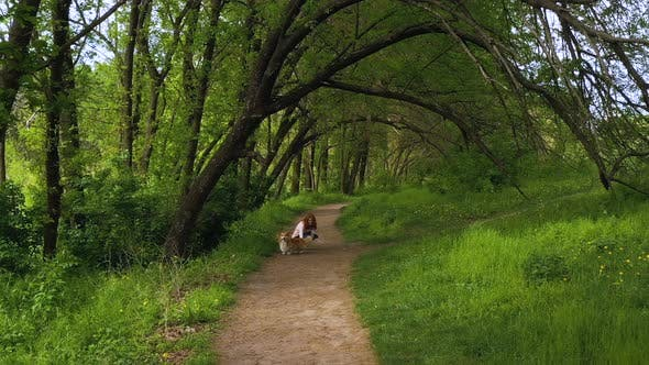 Thumbnail for Girl With The Corgi Dog Walking By The Foothpath Under The Trees 2