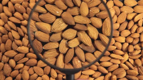 Cover Image for Almonds And A Magnifying Glass