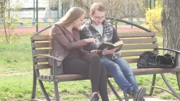 Thumbnail for People Are Sitting On A Bench In The Park In Summer And Reading A Book