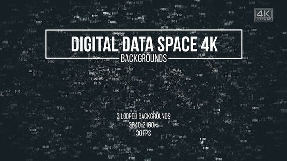 Thumbnail for Digital Data Space