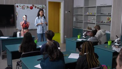 Multiethnic Pupils Studying Human Organs in Lesson