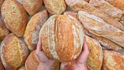 Hands Carry a Bread