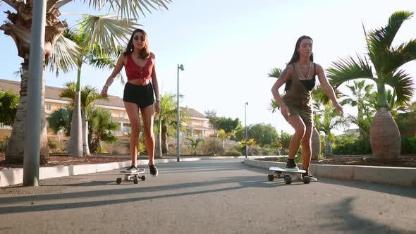 Cover Image for Young Spanish Girls Ride Skateboards on an Island Near Palm Trees on Asphalt Paths of the Park in