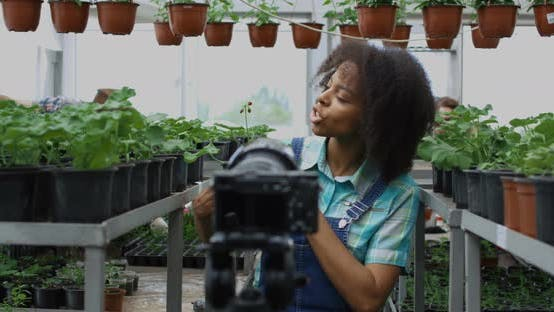 Thumbnail for Gardener Presenting Plant To Camera