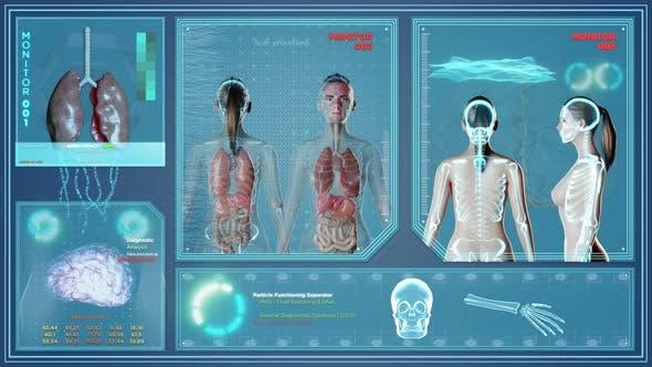 Female Body Futuristic X Ray Scan