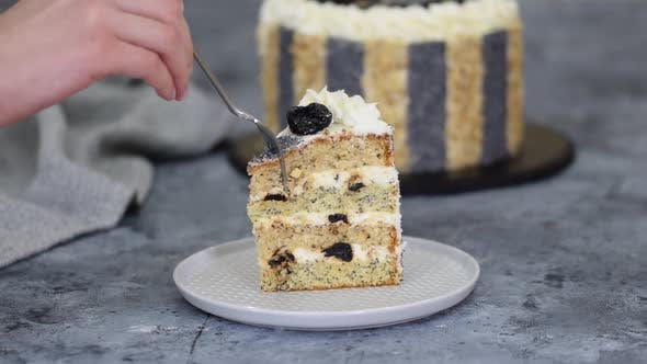 Piece of Delicious Cake with Prunes Nuts and Poppy Seeds