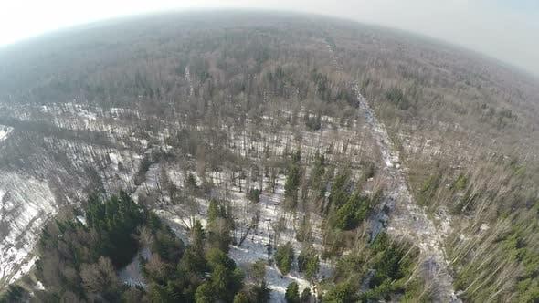 Luftbild des Wintermischwaldes