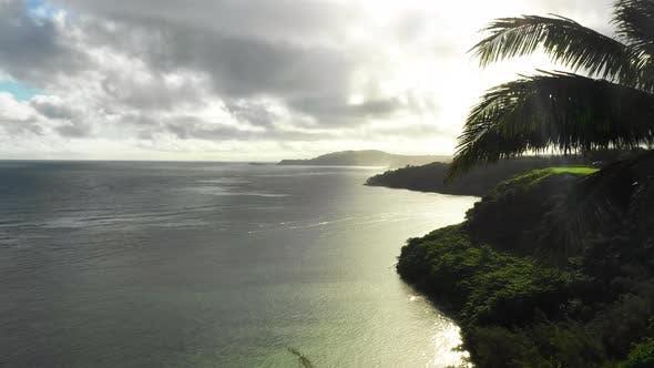 Thumbnail for Rise Up Above Palm Trees Reveal Colorful Sky Sunbeams Cinematic Crane View Kauai Hawaii Usa
