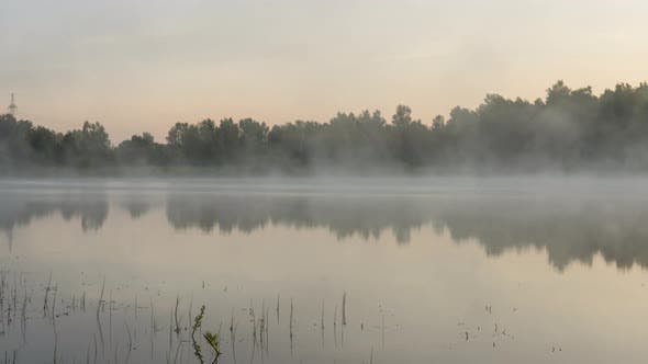 Thumbnail for Misty Früh Morgen am Forest Lake