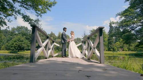 Newlyweds on Their Wedding Day Are Standing on a Wooden Bridge By the Lake
