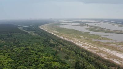 Drone View of Wetland in Chernobyl Exclusion Zone