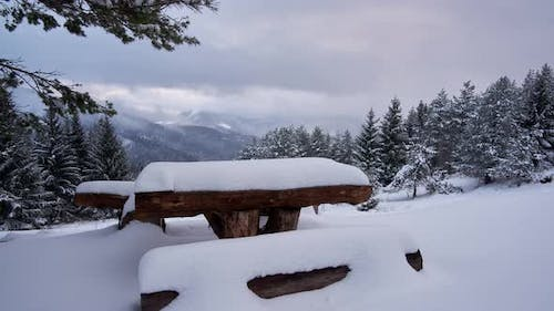 Wooden bench covered with snow, resting place, park, winter landscape.