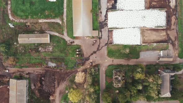 Thumbnail for Aerial drone view of dairy farm with cows eating at trough in corrals. Livestock farm for cows