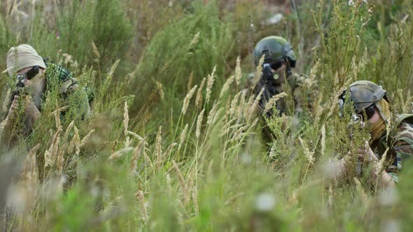 Cover Image for Armed Soldiers Waiting for Enemy in Grass