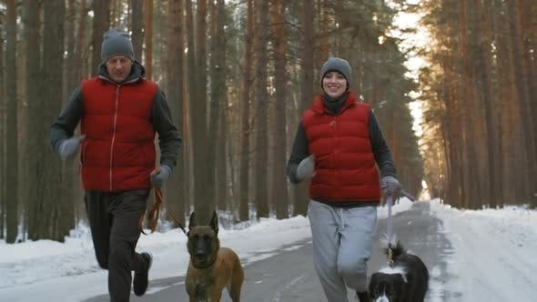 Cover Image for Couple Training with Dogs in Winter Woods