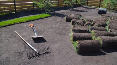 Yard and Garden Landscaping Concept