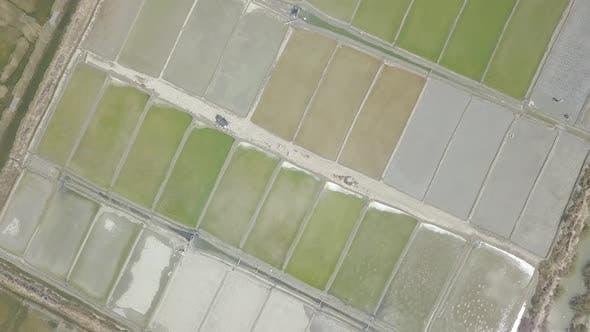 Thumbnail for Traditional Salt Fields, Ladang Garam Indonesia