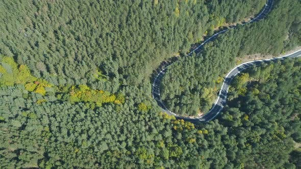 Thumbnail for Top View of Car Driving on Curly, Winding Forest Road in Evergreen Forest in Bulgaria.