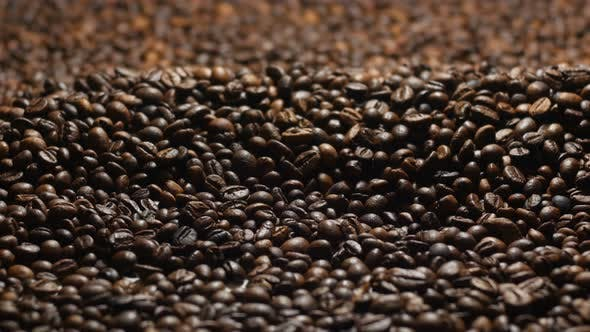 Thumbnail for Lots Of Coffee Beans