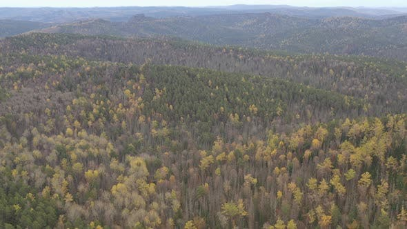 Thumbnail for Aerial View of the Forest in the Mountains.