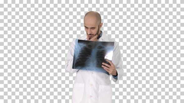 Thumbnail for Doctor Radiologist Looking at X-Ray Scan Walking, Alpha Channel